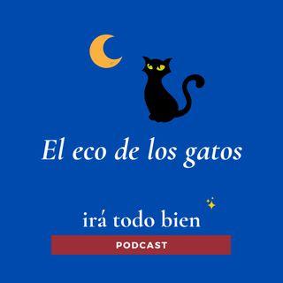 El eco de los gatos