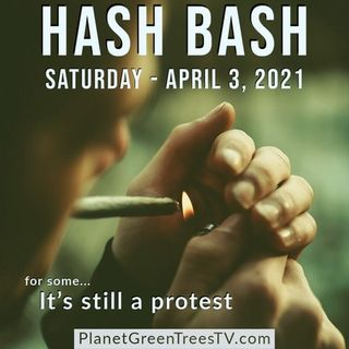The Best of Hash Bash 2021 - Episode 521 - Planet Green Trees TV