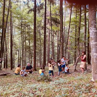 Giro (musicale) nel bosco