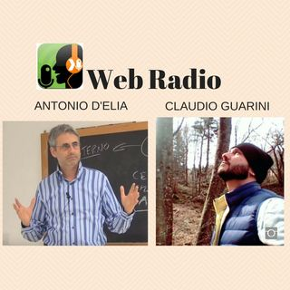 Antonio D'Elia & Claudio Guarini - RADIO