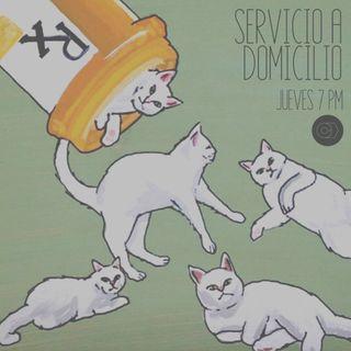 Servicio a domicilio #5