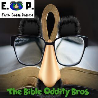 Earth Oddity 51: The Bible Oddity Bros