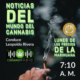 Noticias del mundo del Cannabis 18-01-2021