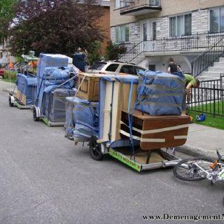 La fête du déménagement