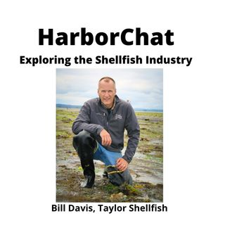 HarborChat - Underwater Farming with Taylor Shellfish