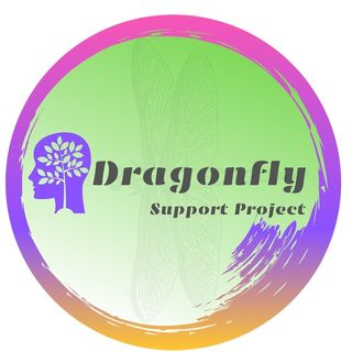Dragonfly student & parent support