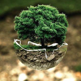 Environmental World