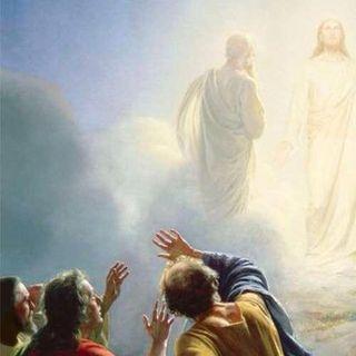 Con Jesús en su Transfiguración
