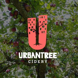SDH 1v1: Virtual Brewery Tour with Urban Tree Cidery