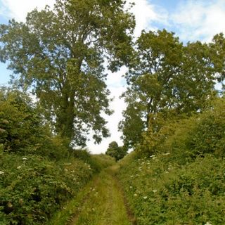 Glynn Burrows: Walking the Roman Roads of England