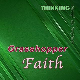 Grasshopper Faith (TTTS#11)