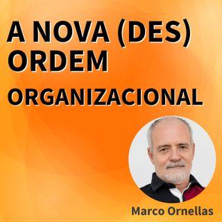 ESTALO | A nova (des) ordem organizacional?