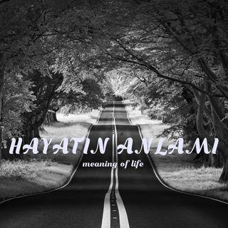 HAYATIN ANLAMI HAKKINDA-1