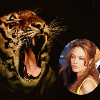 Angelina Jolie - The Tiger Image