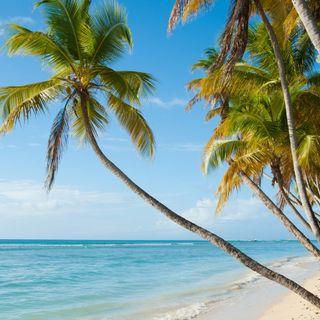 9. Un tour della Giamaica