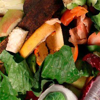 México desperdicia 20.4 millones de toneladas de alimentos