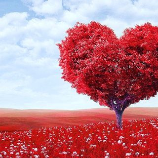Series on Love: Different Types of Love
