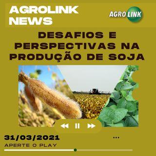 O mercado da soja, novos pesticidas para o arroz e a exportação de amendoim