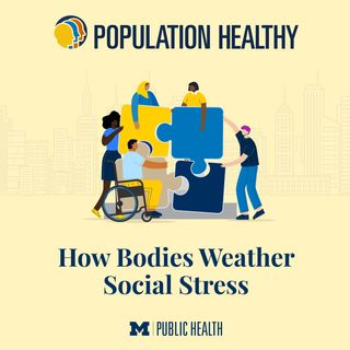 How Bodies Weather Social Stress