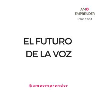 27 - El futuro de la voz