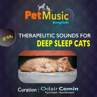#06 Therapeutic Sounds for Deep Sleep Cats | PetMusic