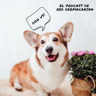 """Epi. 9 Y tu perro dijo: """"En la variedad está el gusto"""" Entrevista con Neus Candela, veterinaria integrativa."""
