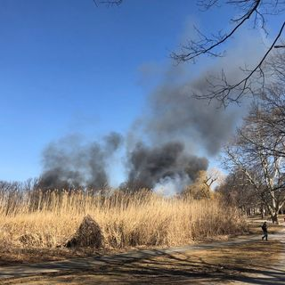 Brush Fire Burns Boston's Back Bay Fens