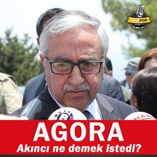 Aysu Basri: Türkiye Kıbrıs'ta lider değişikliği istiyor ancak Akıncı'nın bu seçimi de alabileceği görülüyor