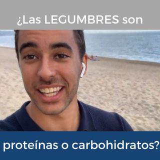 ¿Las LEGUMBRES son proteínas o carbohidratos?