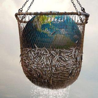 """""""Seaspiracy"""" il filmdocumentario che racconta l'impatto ambientale della pesca"""