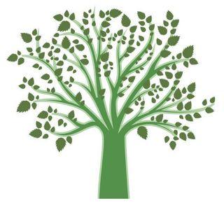 L'albero Della Psicologia