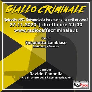 #57 Ep. | Entomologia forense nei grandi processi (Mostro di Firenze)