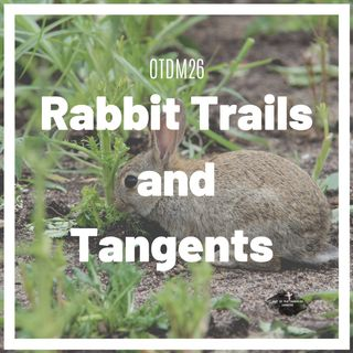 OTDM26 Rabbit trails and tangents