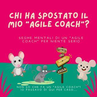 Ma davvero devo fare l'Agile Coach? ma che cavolo di lavoro è?