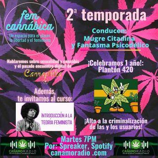FEM CANNÁBICA #14
