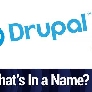 How Did Drupal Get Its Name? | TWiT Bits