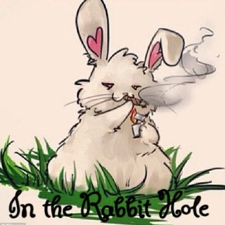 In The Rabbit Hole