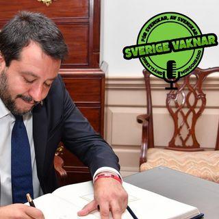 Nyval i Italien - Salvini sänker sin egen regering