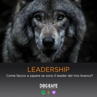 #061 - LEADERSHIP: Come faccio a sapere se sono il leader del mio branco