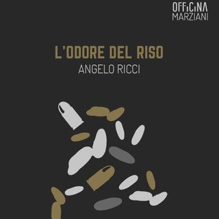 2ª Parte | Trilogia di Angelo Ricci: L'odore del riso
