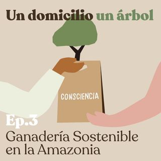 EP3: Ganadería sostenible en la Amazonía