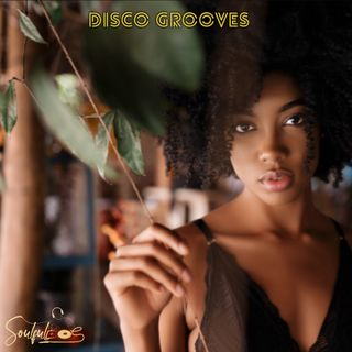 Soul Disco Grooves Vol. 01