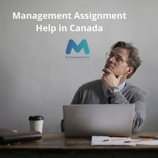 Tips By Management Assignment Help Providers To Become A Successful Manager!