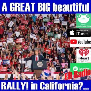 Morning moment A great BIG beautiful rally? Jan 30 2019