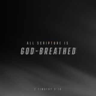 Episode 135: 2 Timothy 3:15-16 (May 15, 2018)