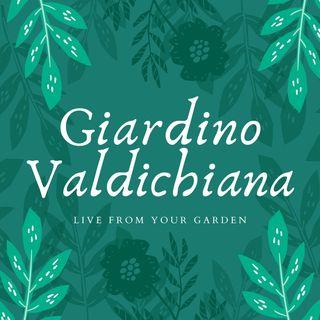 Giardino Valdichiana