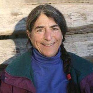 A Conversation with Elizabeth Henderson - Peacework Farm