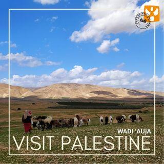 Visit Palestine: 03 Wadi Auja - Accesso alla terra