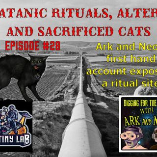 True account of satanic rituals, altars and sacrificed cats! Digging for the Truth #28