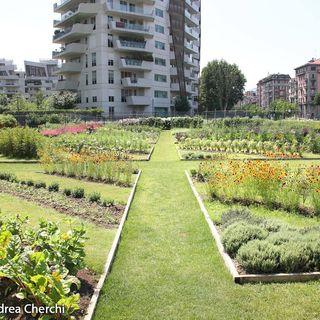 #roma Che idea gli Orti Urbani!
